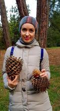 В Ботсаду ТГУ появится «пчелиный отель» и другие экологические проекты