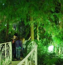 20 мая 2016 г. в Сибирском ботаническом саду ТГУ прошло мероприятие «Ночь в музее»