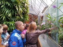 В Сибирском ботаническом саду ТГУ прошло закрытие выставки творческих работ «Мир цветов глазами детей»