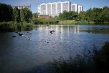 В ботаническом саду ТГУ появятся экскурсионные маршруты и зона отдыха