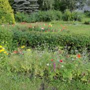 Сегодня праздник саду и душе (Кузьминская лариса)